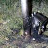 Tellerskastje ontploft