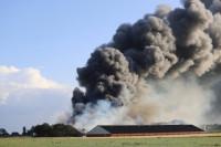 Duizenden kippen omgekomen bij grote brand Niawier